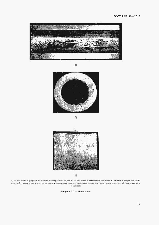 ГОСТ Р 57125-2016. Страница 17